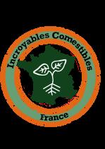 logo-ic-france
